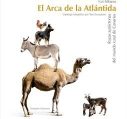 EL ARCA DE LA ATLANTIDA