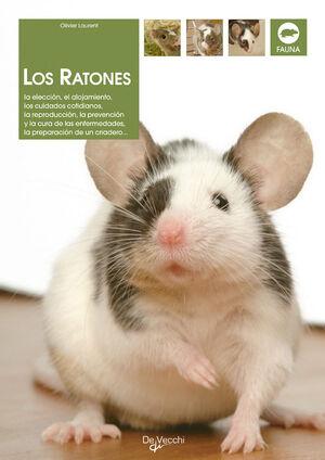 LOS RATONES