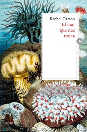 EL MAR QUE NOS RODEA